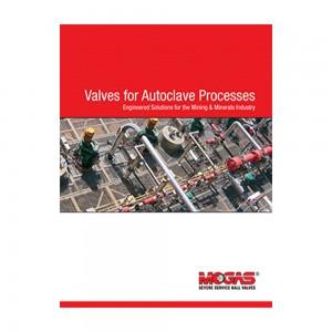 Valves for Autoclave Processes Brochure English (PK/25)
